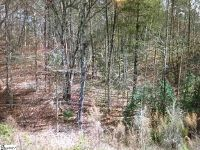 Home for sale: 00 Crowe Creek Rd., Six Mile, SC 29682