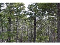 Home for sale: 13050 Deer Ridge Way, Larkspur, CO 80118