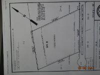Home for sale: Holly Ct., Abita Springs, LA 70420