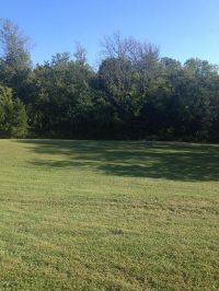 Home for sale: Lot 14 Wetherby Ave., Bardstown, KY 40004
