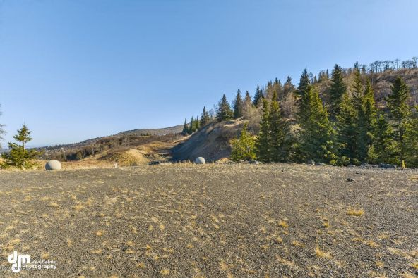 L8 Southpointe Bluff Dr., Anchorage, AK 99516 Photo 35