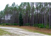 Home for sale: 33348 Half Hitch Dr., Callahan, FL 32011