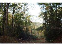 Home for sale: Sr #1100 Fork Creek Rd., Saluda, NC 28773