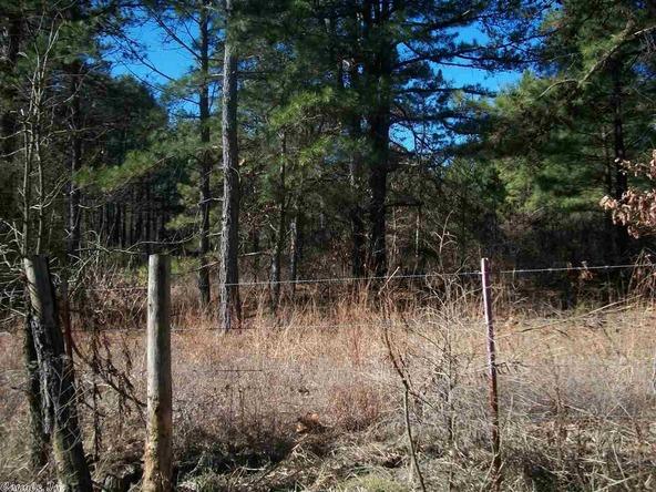 399 Dogwood Trail, Quitman, AR 72131 Photo 7