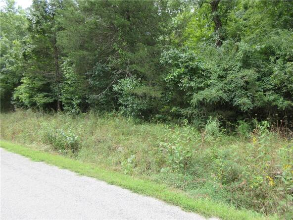 165 Wild Turkey Dr., Holiday Island, AR 72631 Photo 5