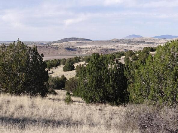522 Sierra Verde Ranch, Seligman, AZ 86337 Photo 1