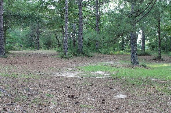 30191 Hollinger Creek Dr., Robertsdale, AL 36567 Photo 18