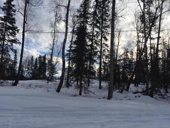 10106 W. Clay-Chapman Rd., Wasilla, AK 99623 Photo 5