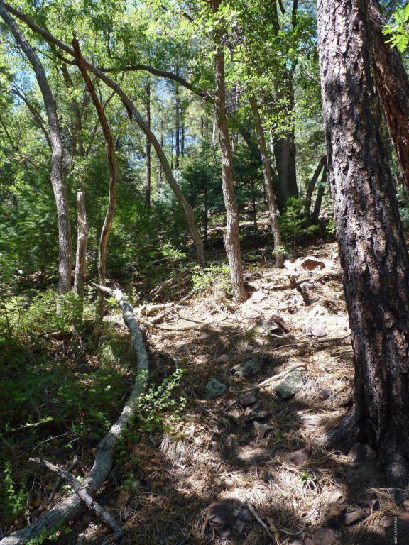 8342 S. Millsite Dr., Prescott, AZ 86305 Photo 36