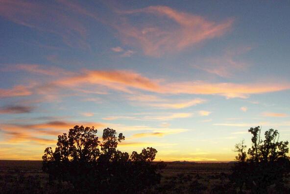 6218 S. Prairie Grass Ln., Williams, AZ 86046 Photo 18
