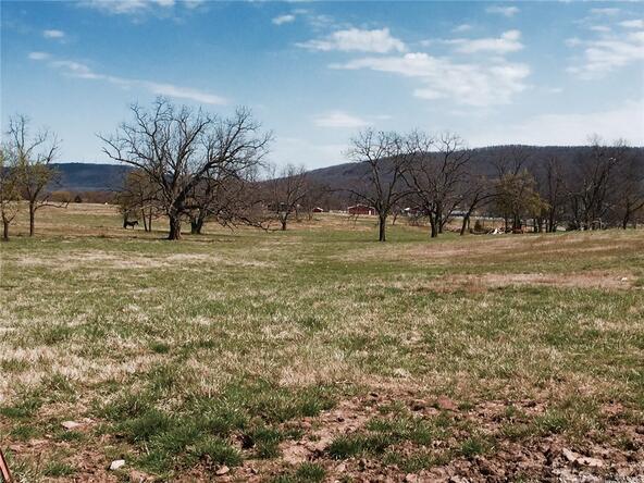 11093 Pickett Ridge Rd., Prairie Grove, AR 72753 Photo 3