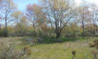 Home for sale: Lake Park, Onekama, MI 49675