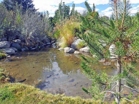 800 S. Barlow Ln., Bishop, CA 93514 Photo 39