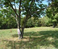 Home for sale: 15 Villa Dileonardo, Marlboro, NY 12542