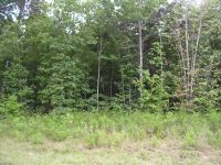 Home for sale: 319 Hilltop Ln. Lot 319, Wilder, TN 38589