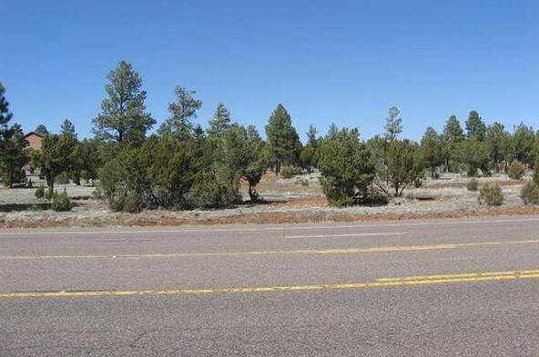 2328 Hwy. 260, Overgaard, AZ 85933 Photo 6