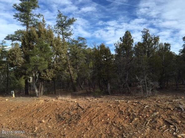 1300 W. Sierra Buena Ct., Show Low, AZ 85901 Photo 10