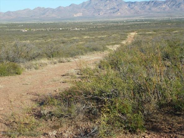 42 Ac S. Ghost Rider Rd., Portal, AZ 85632 Photo 3