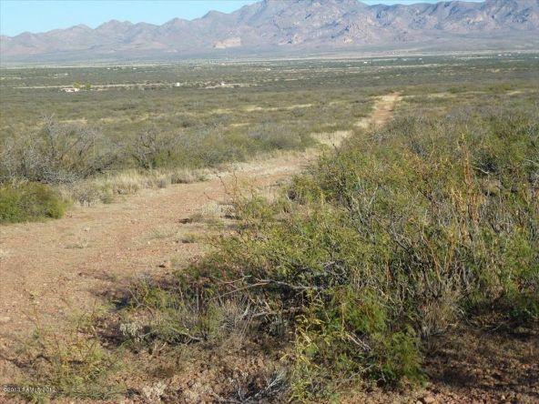 42 Ac S. Ghost Rider Rd., Portal, AZ 85632 Photo 3