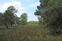 Home for sale: 138 Beachview Ln., Edisto Island, SC 29438