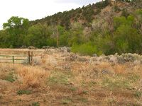 Home for sale: Witt Rd. (End), Taos, NM 87571