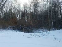Home for sale: Lot 63 Adirondack Ct., Middlebury, IN 46540