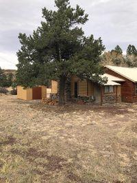 Home for sale: 63 Southfork Cr 4036, Greer, AZ 85927