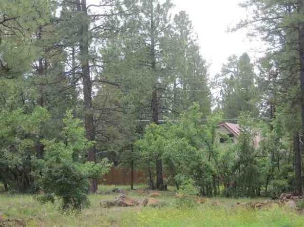 5867 S. Hidden Oak, Pinetop, AZ 85935 Photo 3
