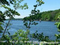 Home for sale: Eaglepoint Ln., Barnett, MO 65011