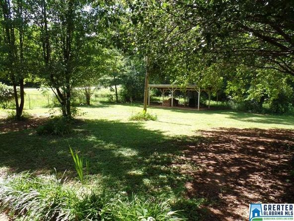 11182 Co Rd. 19, Heflin, AL 36264 Photo 28