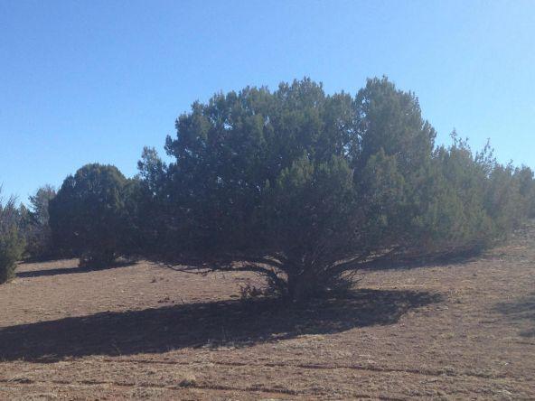 246 Antelope Run, Ash Fork, AZ 86320 Photo 8