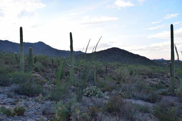6tbd W. Sweetwater, Tucson, AZ 85745 Photo 17
