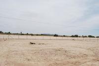 Home for sale: 8103 W. Picacho Dr., Casa Grande, AZ 85194