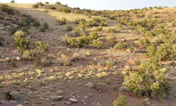 297 Woodridge Ranch, Concho, AZ 85924 Photo 15