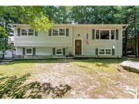 Home for sale: 17 Chester St., Rock Hill, NY 12775