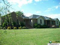 Home for sale: 99 Pleasant Hill Cut Off Rd., Boaz, AL 35956