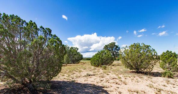 14750 N. Double Adobe Rd., Prescott, AZ 86305 Photo 2