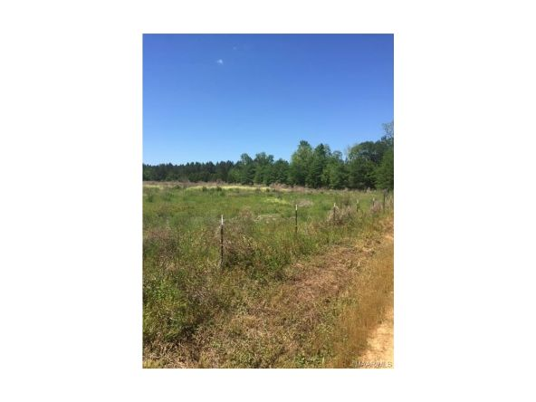 2870 Swanner Bridge Rd., Rutledge, AL 36071 Photo 3