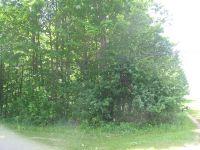 Home for sale: M-65 (0.89 Acres), Posen, MI 49766