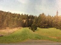 Home for sale: 0 Eagle Valley Rd., Yoncalla, OR 97499