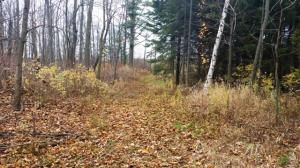 27.55 Acre State Hwy. 32, Sheboygan Falls, WI 53085 Photo 21