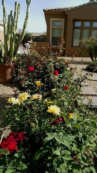 4156 E. Meadowview Dr., Gilbert, AZ 85298 Photo 47