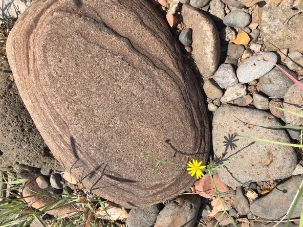 350 No Name, Ash Fork, AZ 86320 Photo 29
