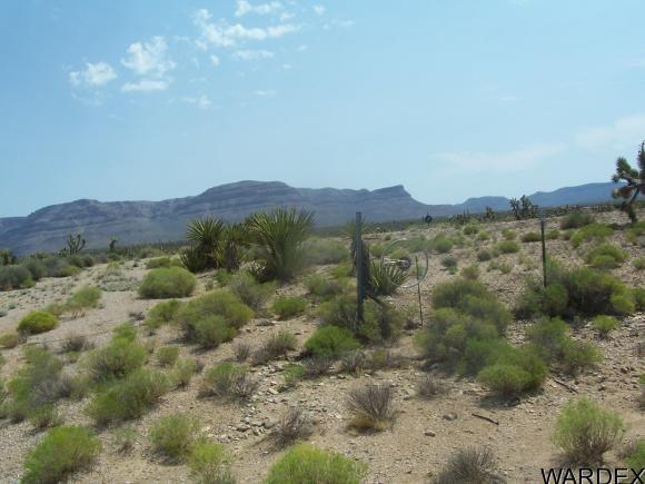 27212 N. Driftwood Dr., Meadview, AZ 86444 Photo 6
