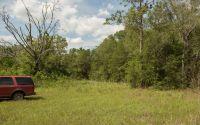 Home for sale: Tbd Cr 250, Live Oak, FL 32060