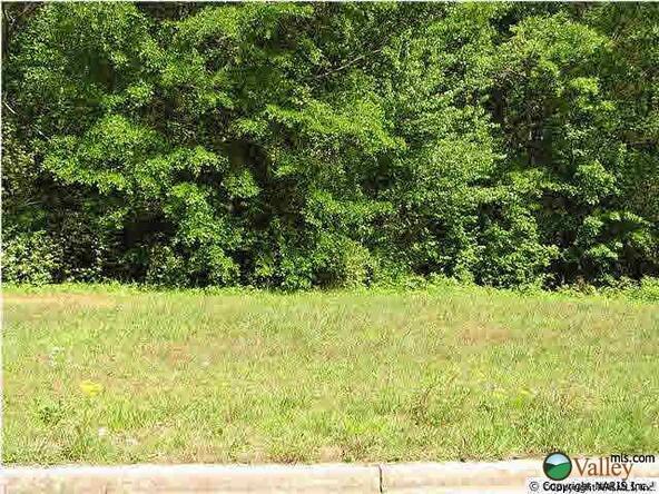 Sommers Ridge Dr., Athens, AL 35611 Photo 1