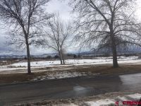 Home for sale: 2003 Market, Montrose, CO 81401