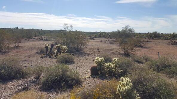 5301 E. Prickly Pear Rd., Cave Creek, AZ 85331 Photo 5