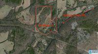 Home for sale: 2911 Spring Creek Rd., Montevallo, AL 35115