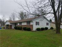 Home for sale: 208 Orchard Ln., Staunton, IL 62088